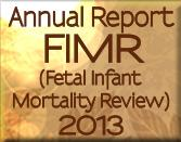 2013 Fetal Infant Mortality Report