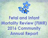 2016 Fetal Infant Mortality Report